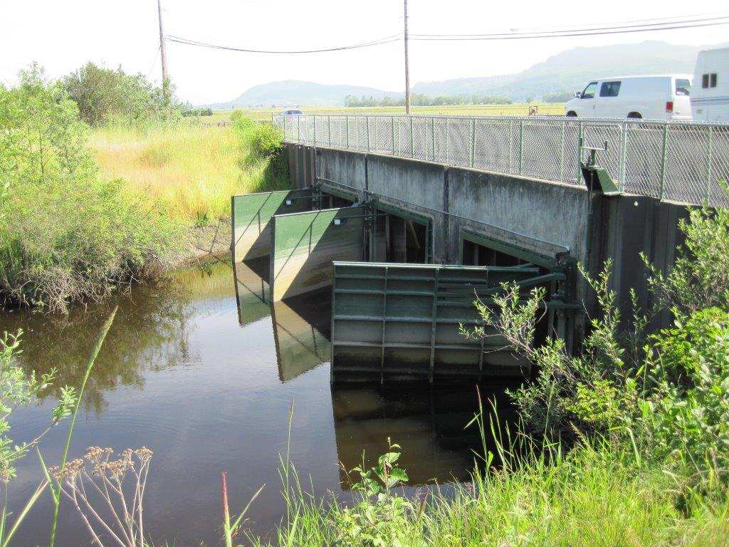 new fish-friendly floodgates at Fisher Slough which maintain flood protection while improving fish passage and tidal exchange onto the restoration site. © Jenny Baker / TNC