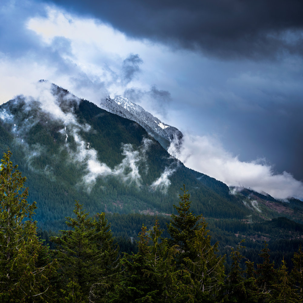 Heybrook Lookout Trail, west of Stevens Pass, is in the Mt. Baker-Snoqualmie National Forest, one of many National Forests protected by LWCF. Photo by Sony Thomas