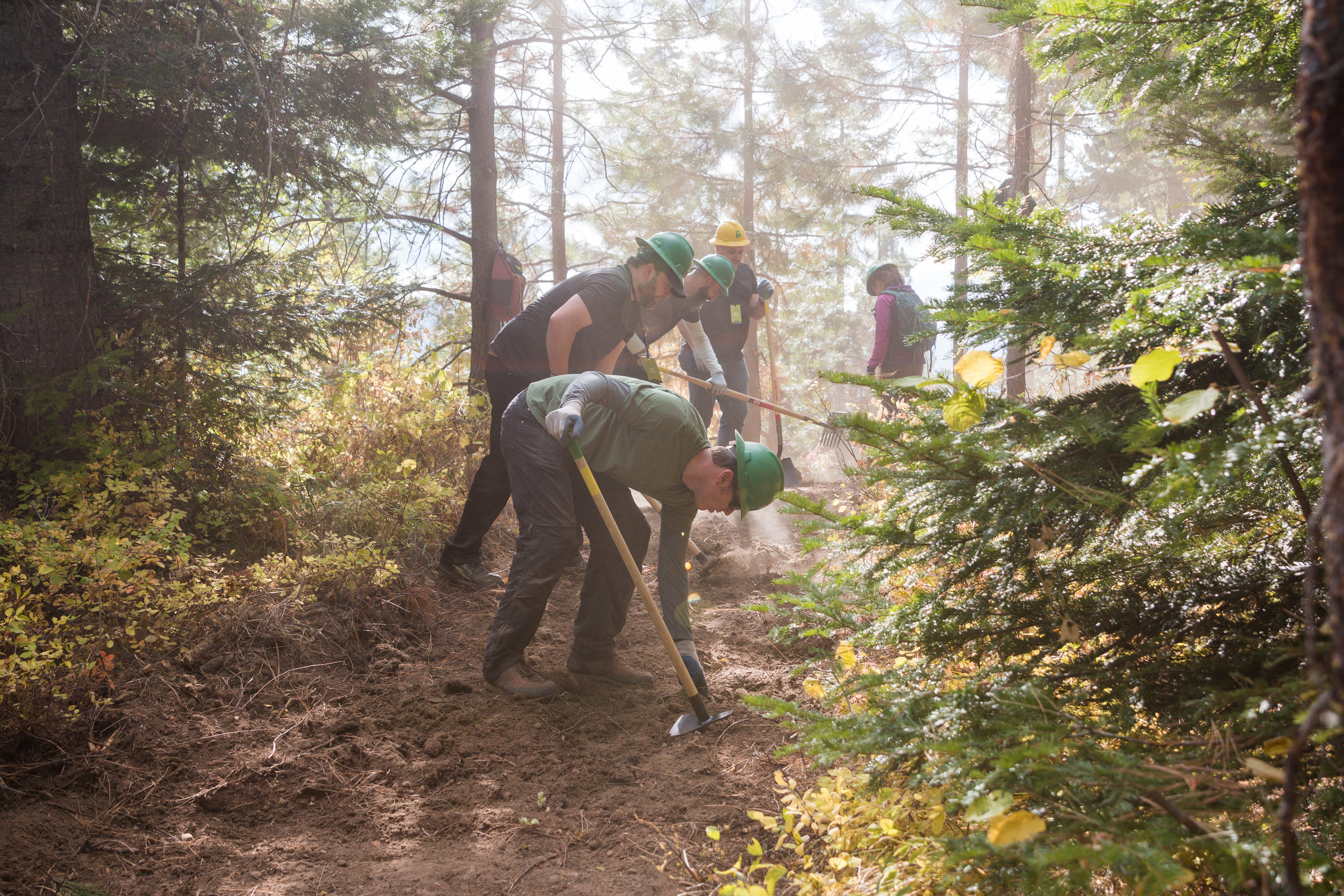 In just 2½ hours, we built 2 miles of new trail on Roslyn Ridge! These REI volunteers sure know how to get things done! Photo © Leslie Carvitto