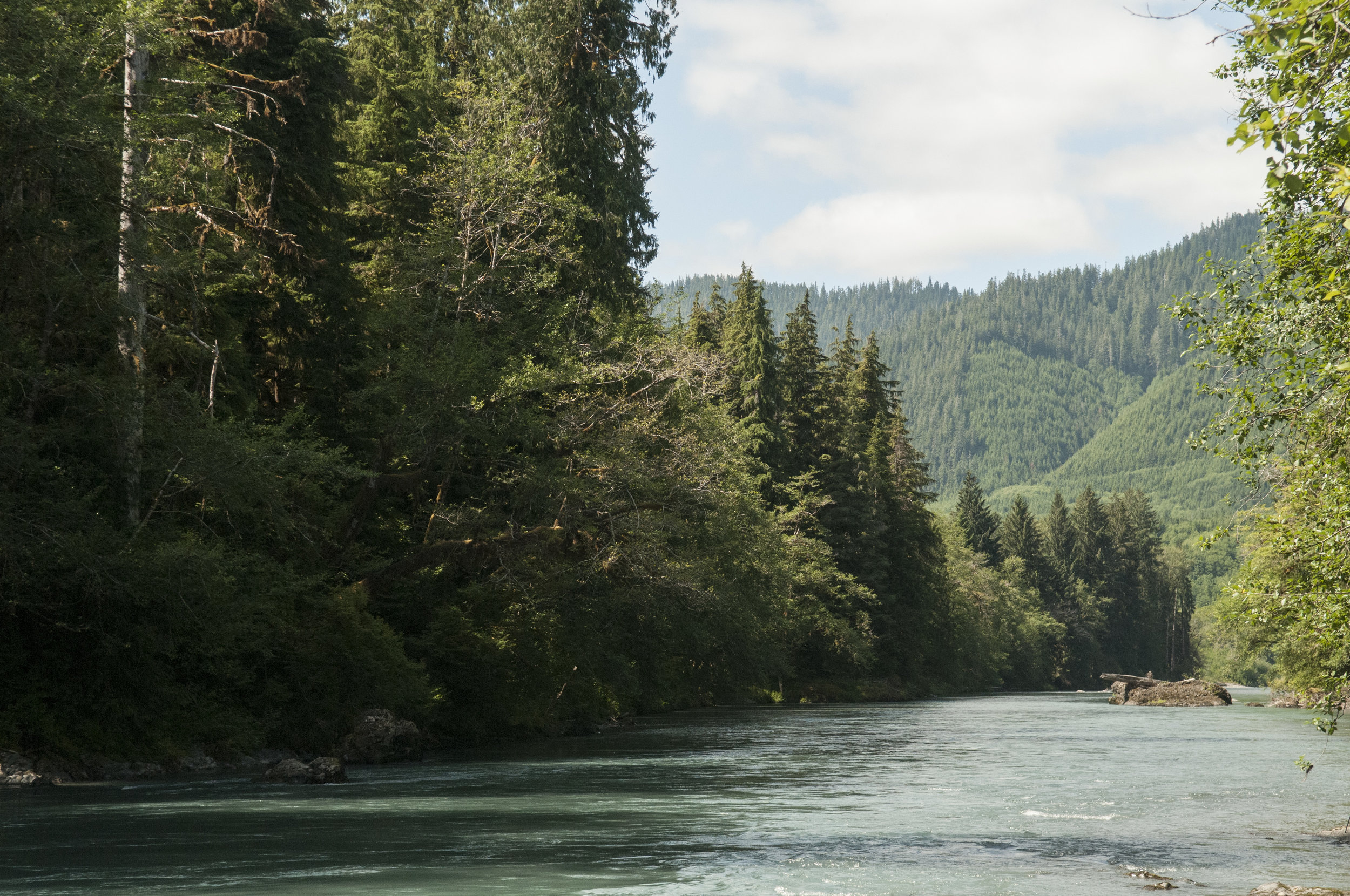 The Hoh River, which Paul Allen contributed money to protecting. © Nikolaj Lasbo / TNC