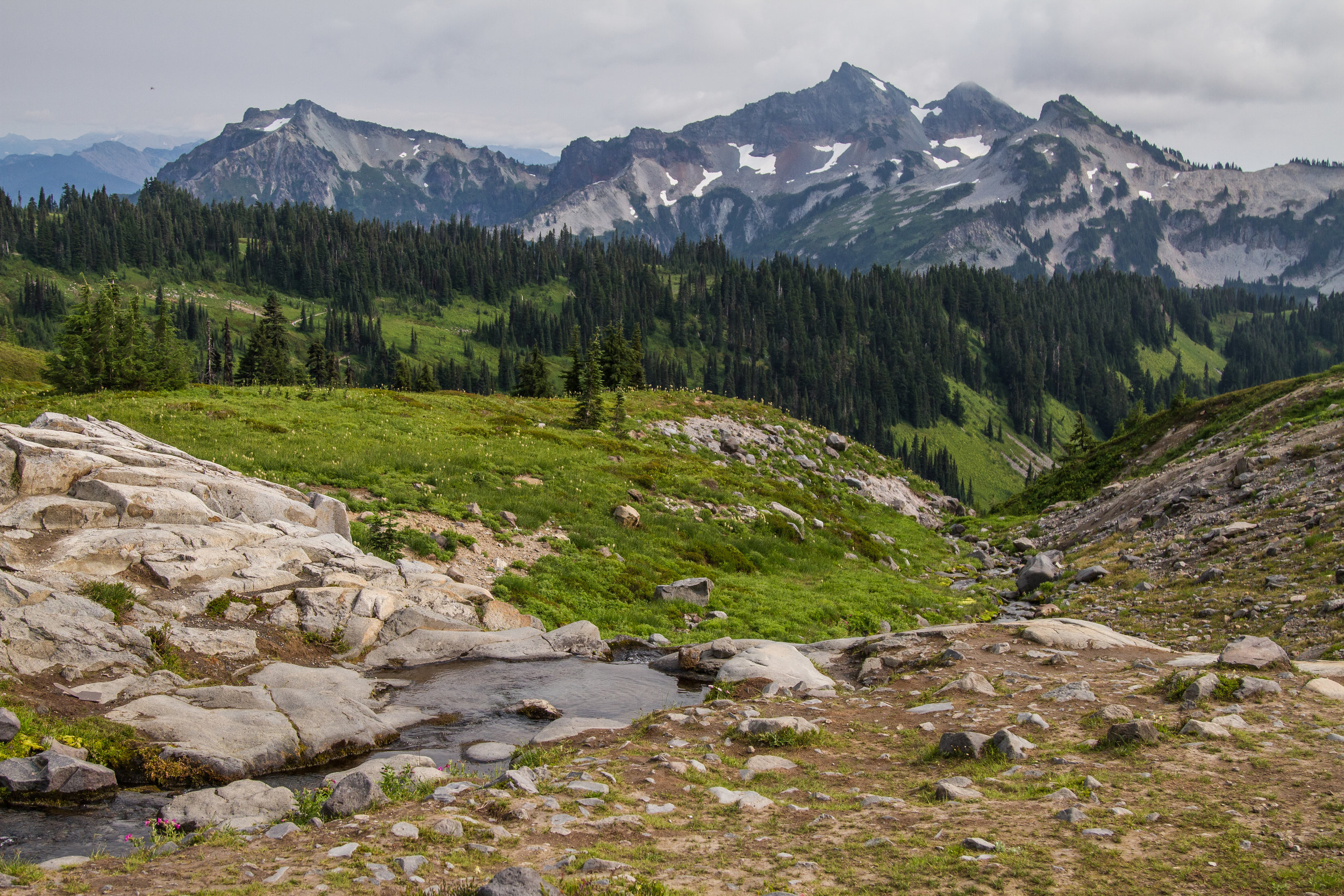 No view on this trail is underwhelming; even looking in the opposite direction from Mount Rainier provides an endless view of Cascade Mountains surrounding the National Park. © Kelly Compton