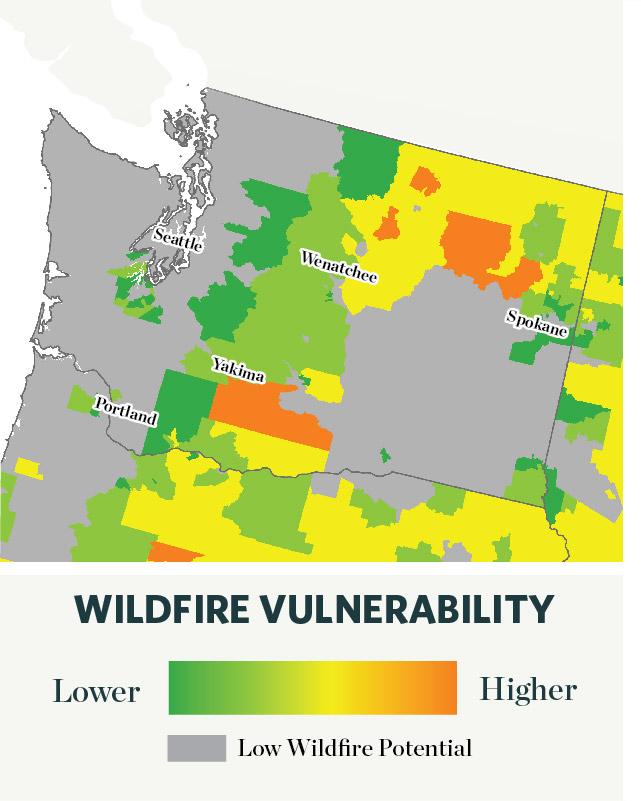 Wildfire_Study2.jpg