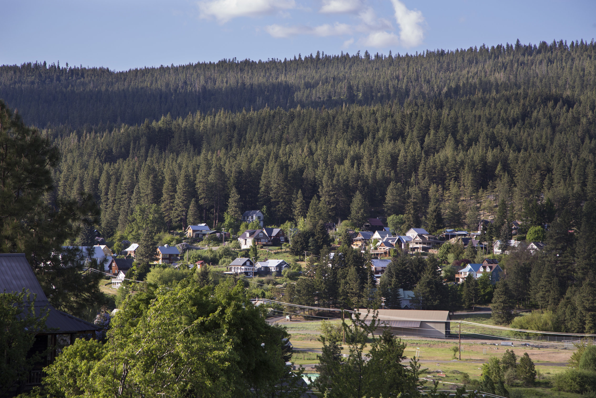 The Teanaway Community Forest is just one model of community forestry in Washington. Photo by John Marshall.