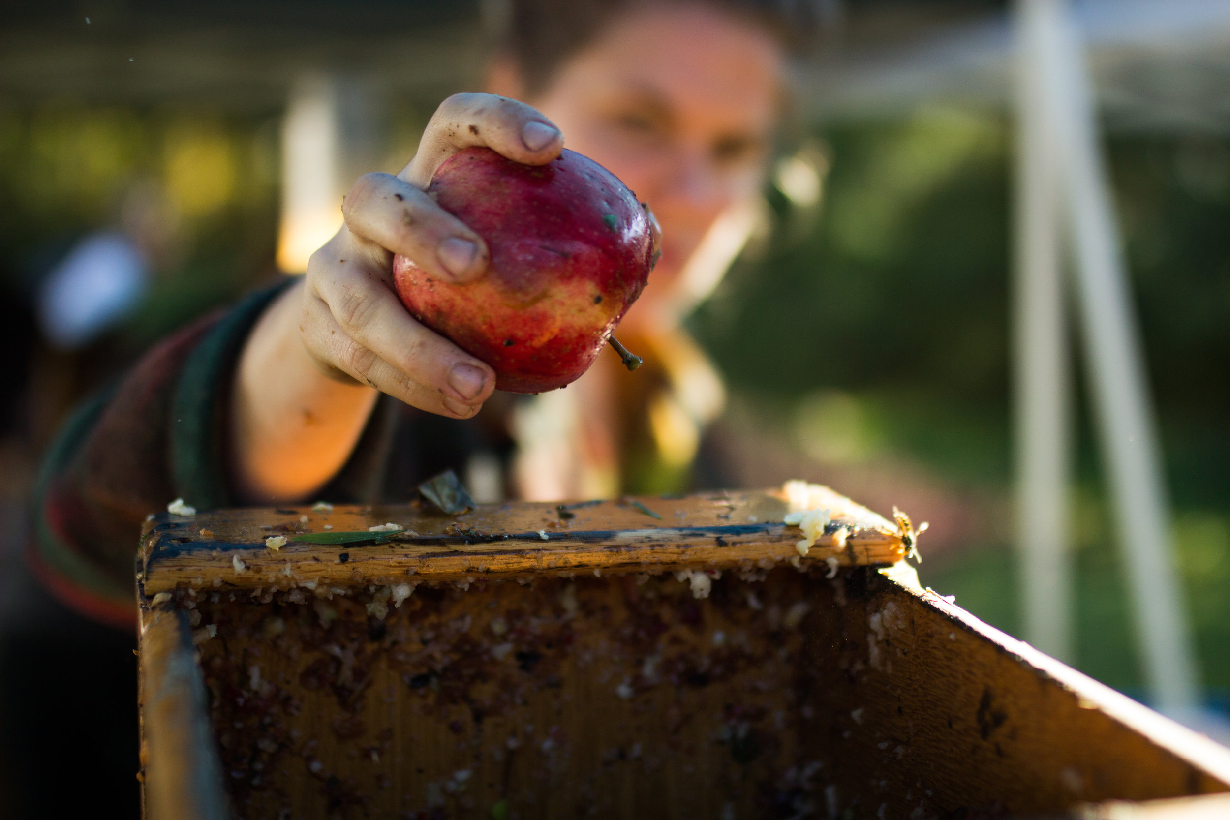 With a $10,000 grant from the WA Coast Works Alliance, Two Hooligans Cider can expand their sustainable cider operation with new equipment and a machine that washes bottles recycled for reuse. Photo by Havilah Gautschi.