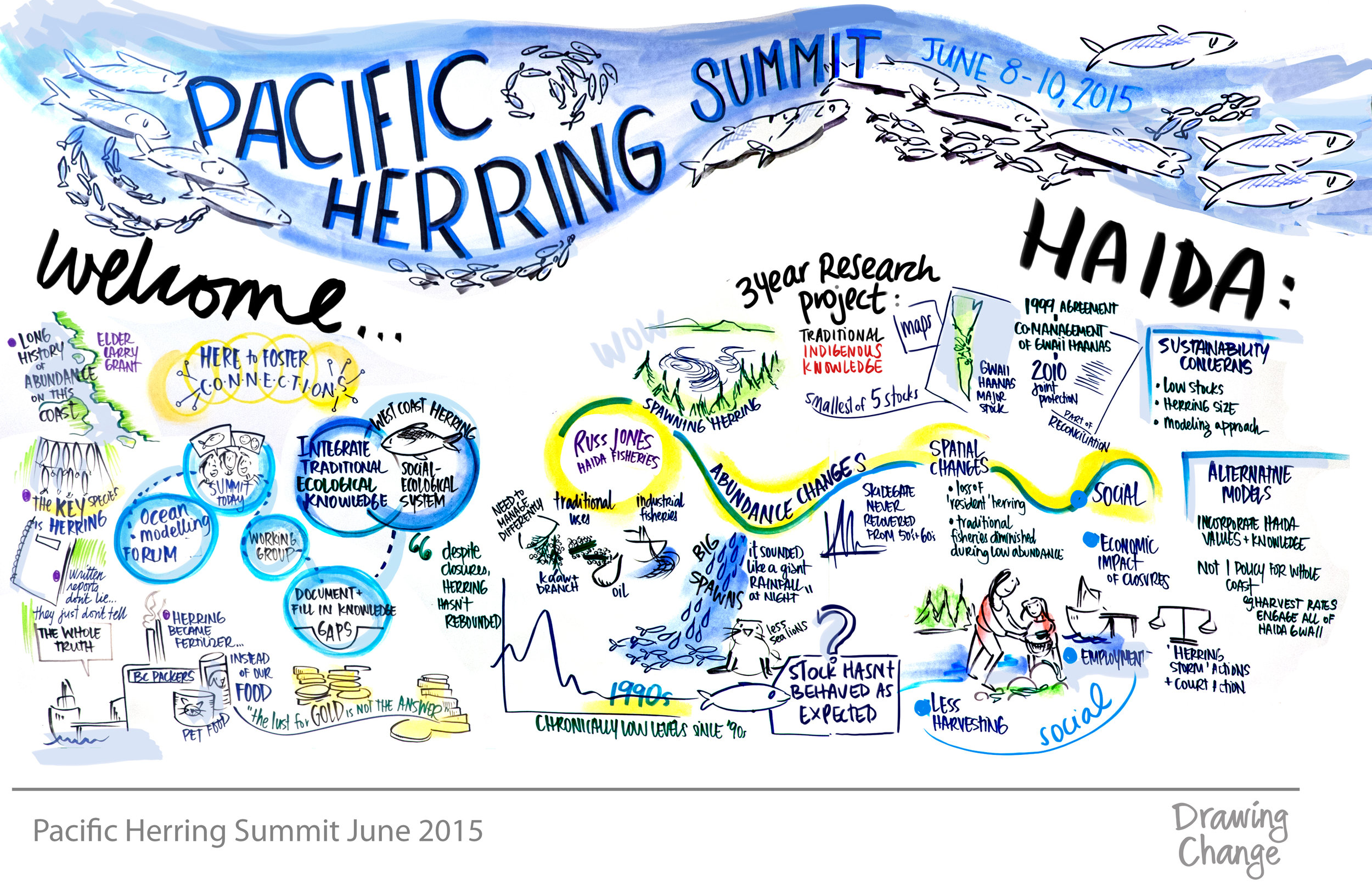 A visual representation of the perspectives on herring presented during the Ocean Modeling Forum's kickoff summit. Image courtesy of Sam Bradd.
