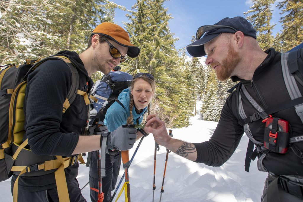 Winter work will pay off for future summers as we learn about tree canopy cover effect on snowpack. © Hannah Letinich