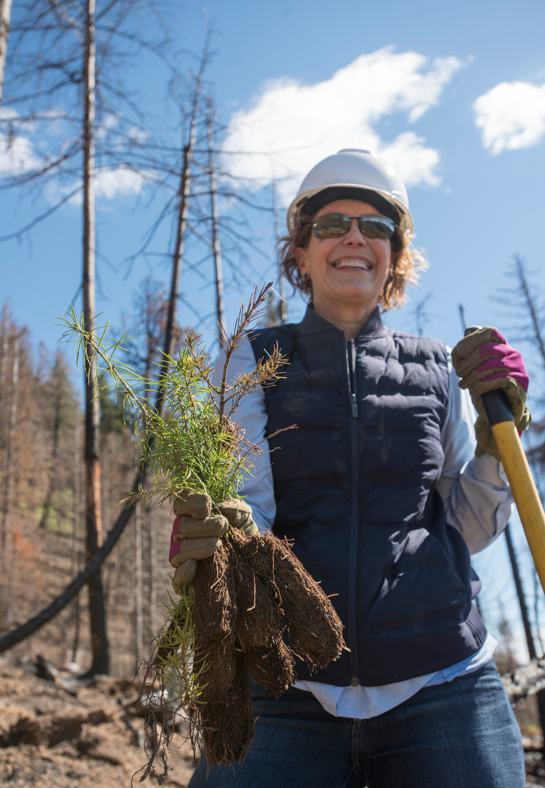 Kate planted saplings during a 2018 Board of Trustees retreat near Roslyn, Washington. Photo by Hannah Letinich.