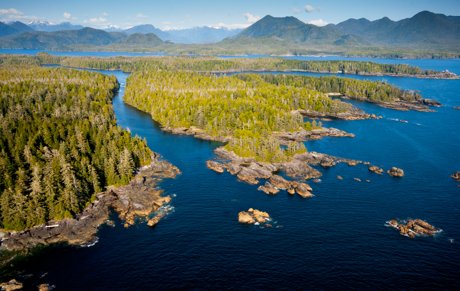 TNC is working in partnership with local Indigenous communities to conserve old-growth forest along British Columbia's southern coast in Clayoquot Sound. Photo by Bryan Evans.