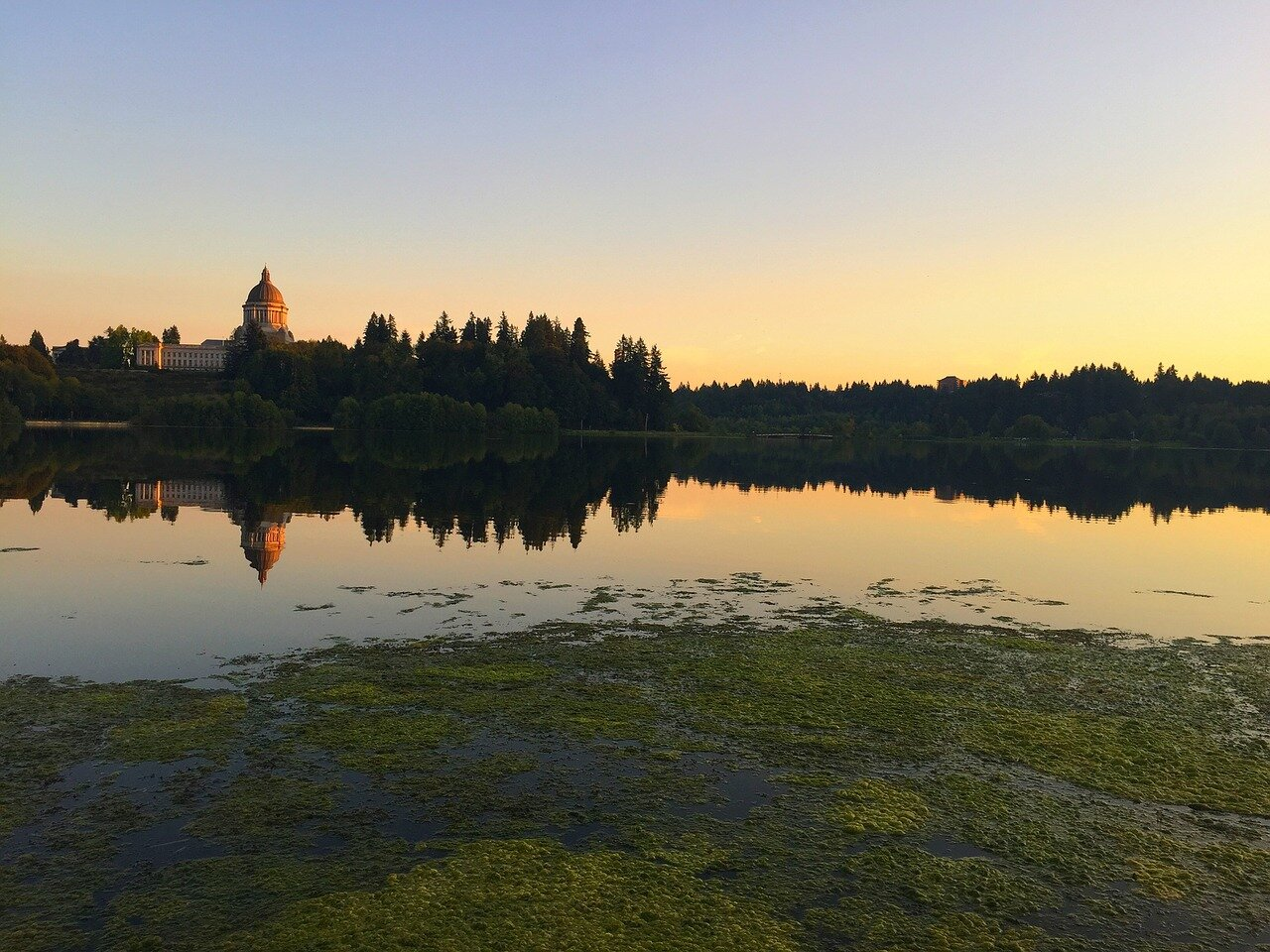 Join us in speaking up for nature in Olympia this session