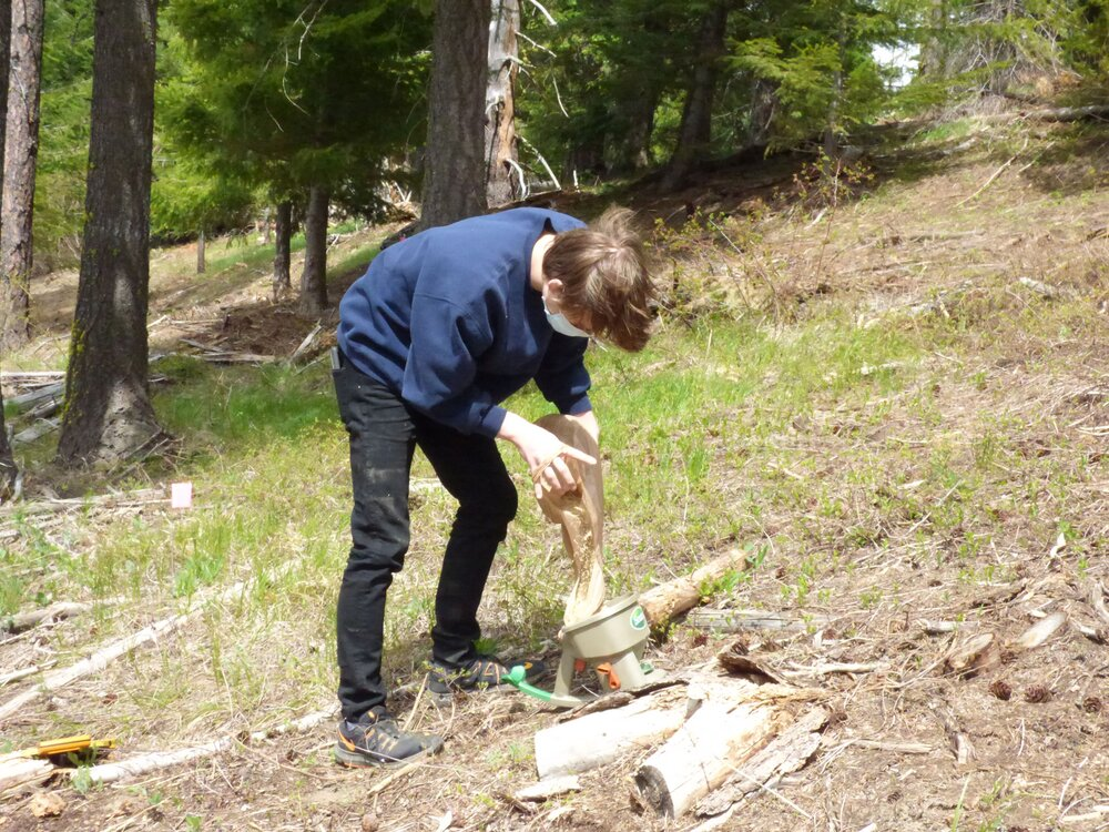A student loads native grass seeds into a seed disperser. Photo courtesy of Swiftwater Learning Center.