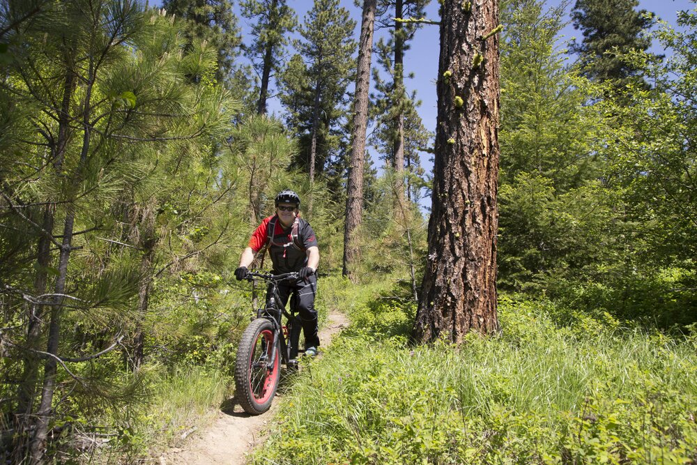 Central Cascades mountain biking by John Marshall.jpg