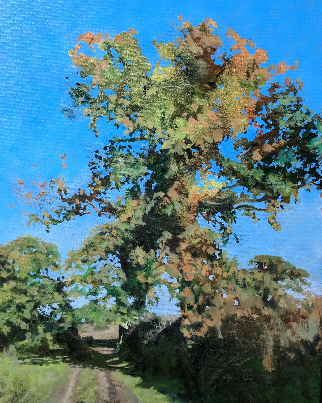 Oak on the turn