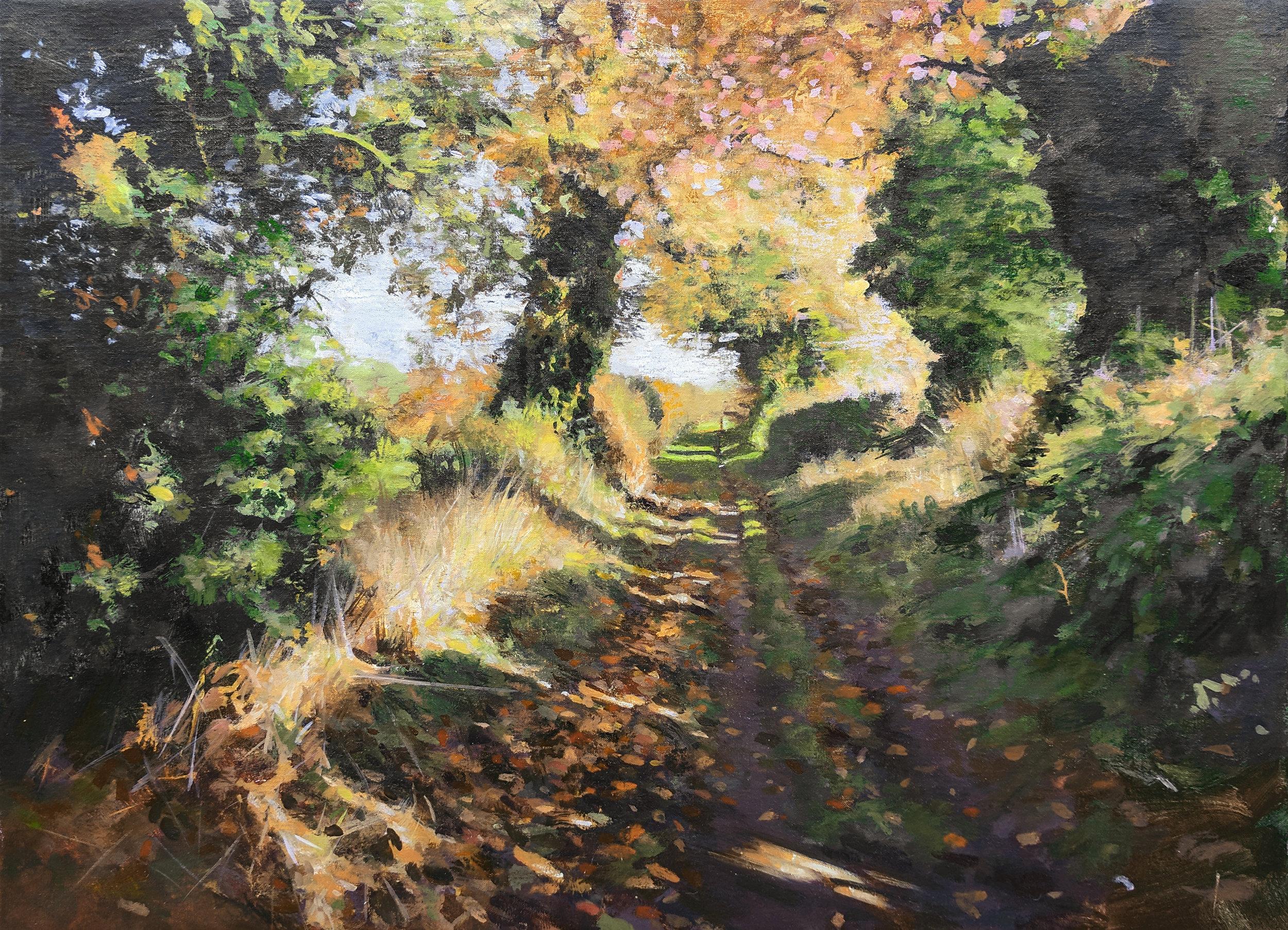 Snake Lane at Lound