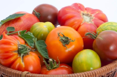 Oranges and more of heirloom tomatoes.