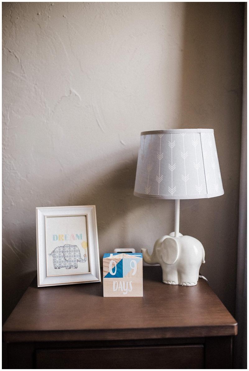 In-Home Newborn Portraits | Dayton, Ohio