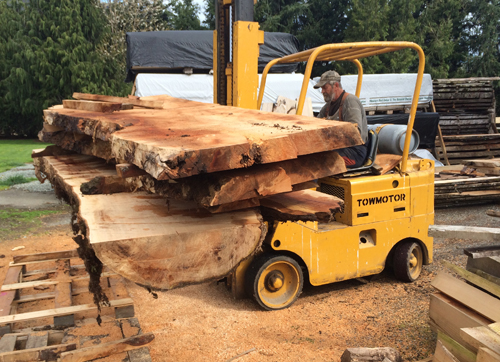 Andy is one of Trevor's wood suppliers. He collects individual trees in and around the Fraser Valley and he's helped Trevor visualize what the inside of a log will look like when the tree is opened up. Trevor and Andy spend a lot of time visiting Andy's various stashes of felled logs to find appropriately-sized pieces with the figure Trevor wants.