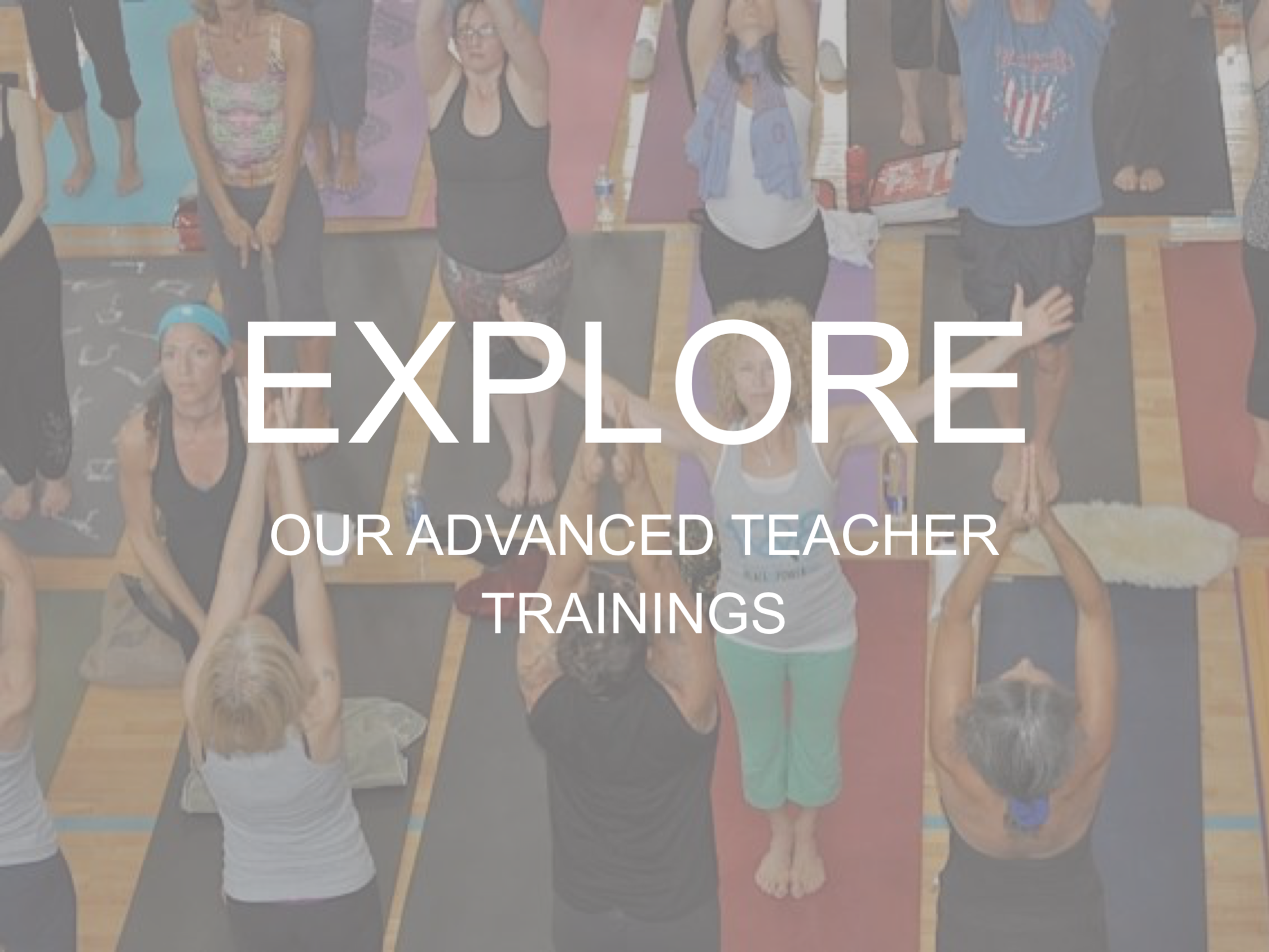 Advanced Teacher Trainings