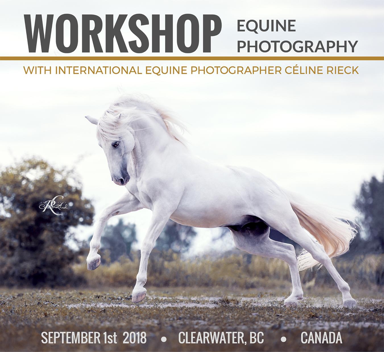 HP_Flyer_Workshop_Canada_BILD.jpg