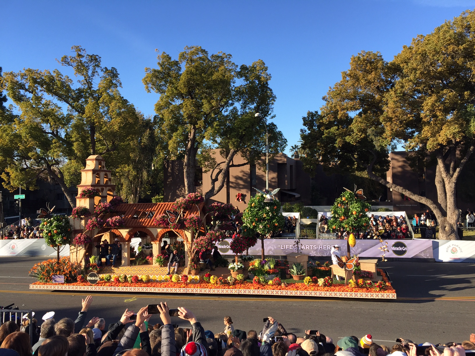 Rose Parade New Year's Day 2016, photo by Deborah Hall