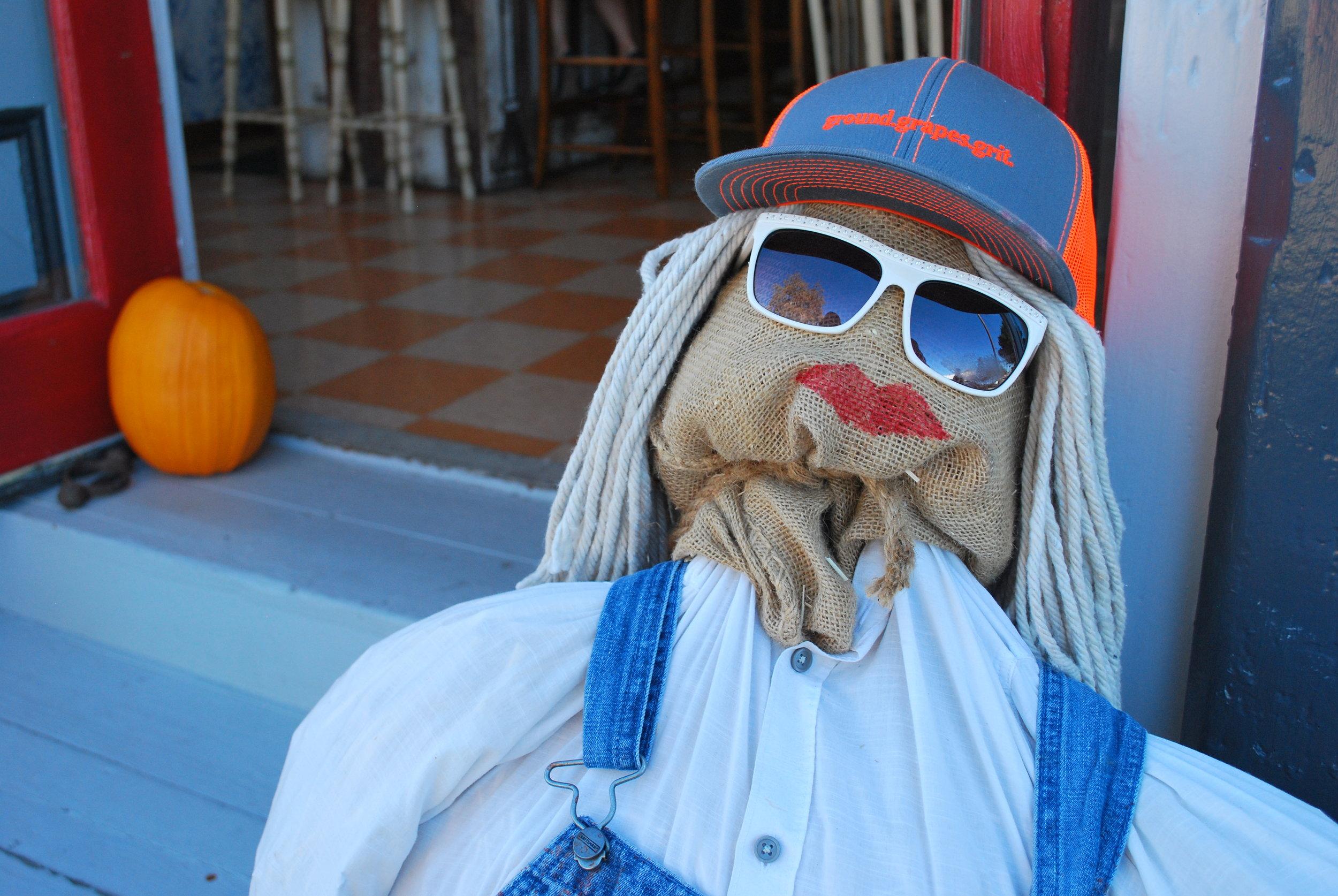 Hip Scarecrow-ette Greets Wine Tasters!
