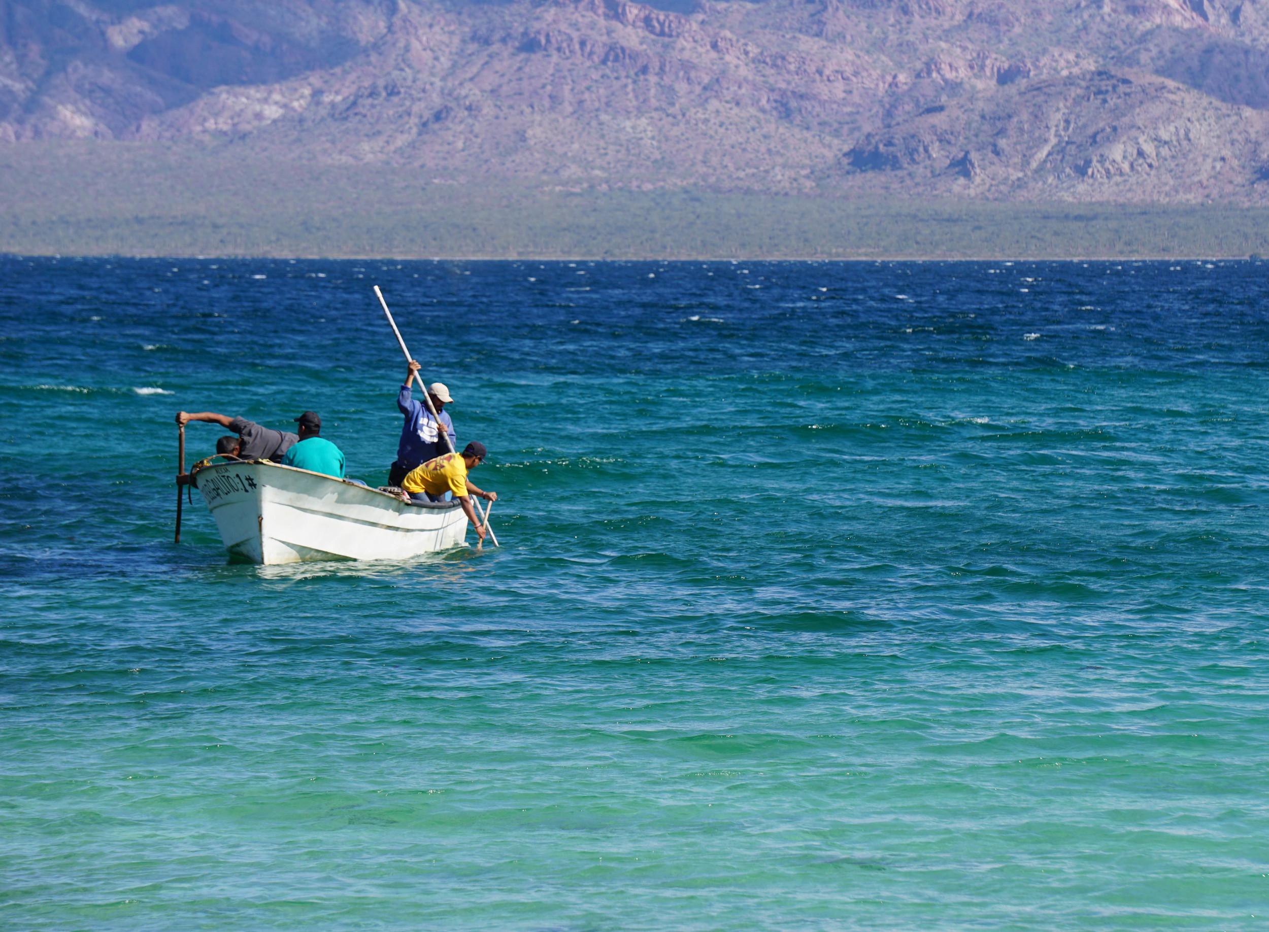 fisherman 4 concepcion edit.jpg