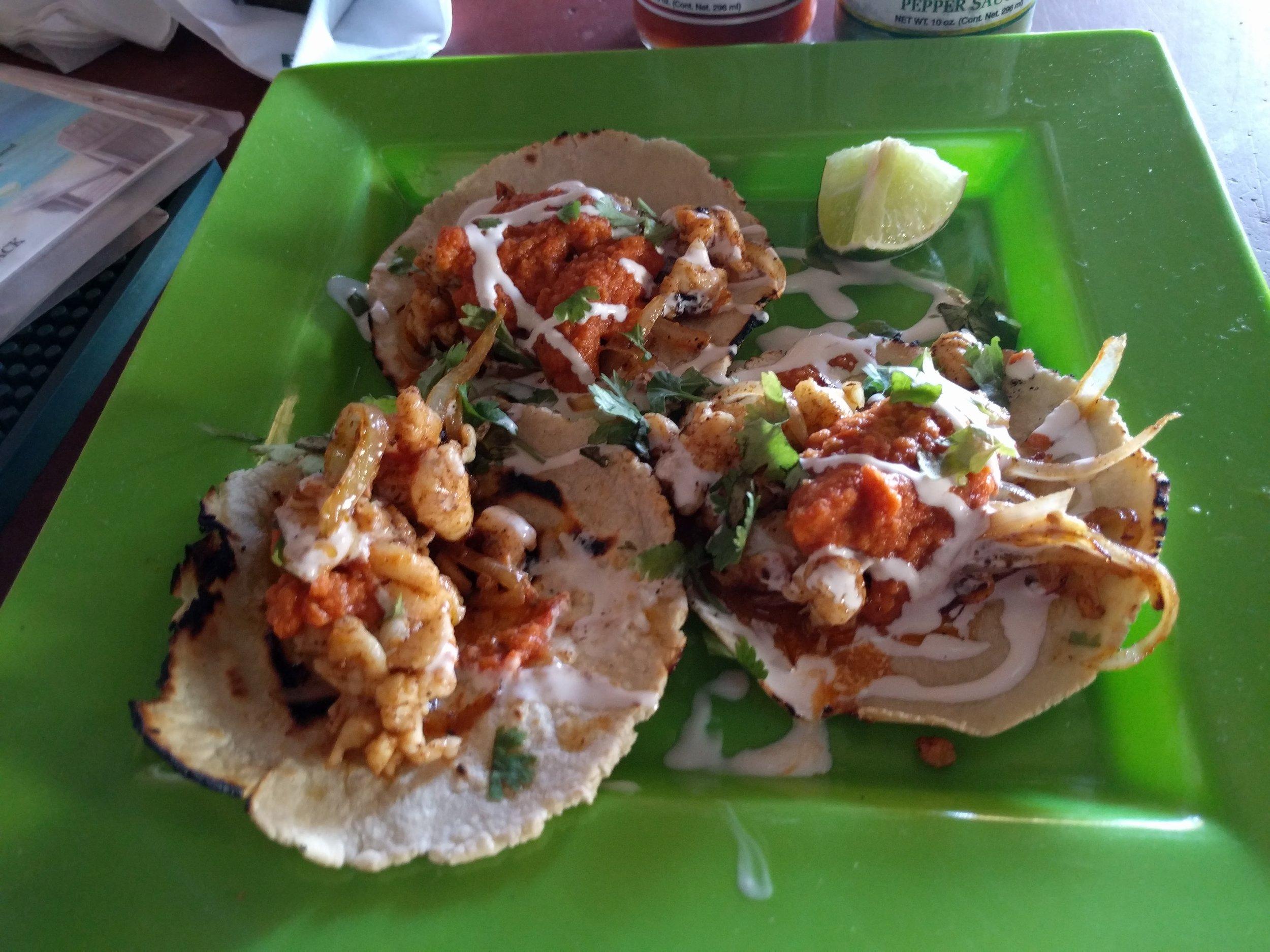 Lobster Tacos - Driftwood - Hopkins, Belize