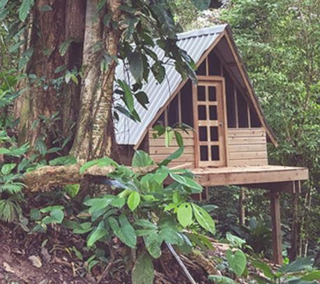 nomad tree lodge.JPG