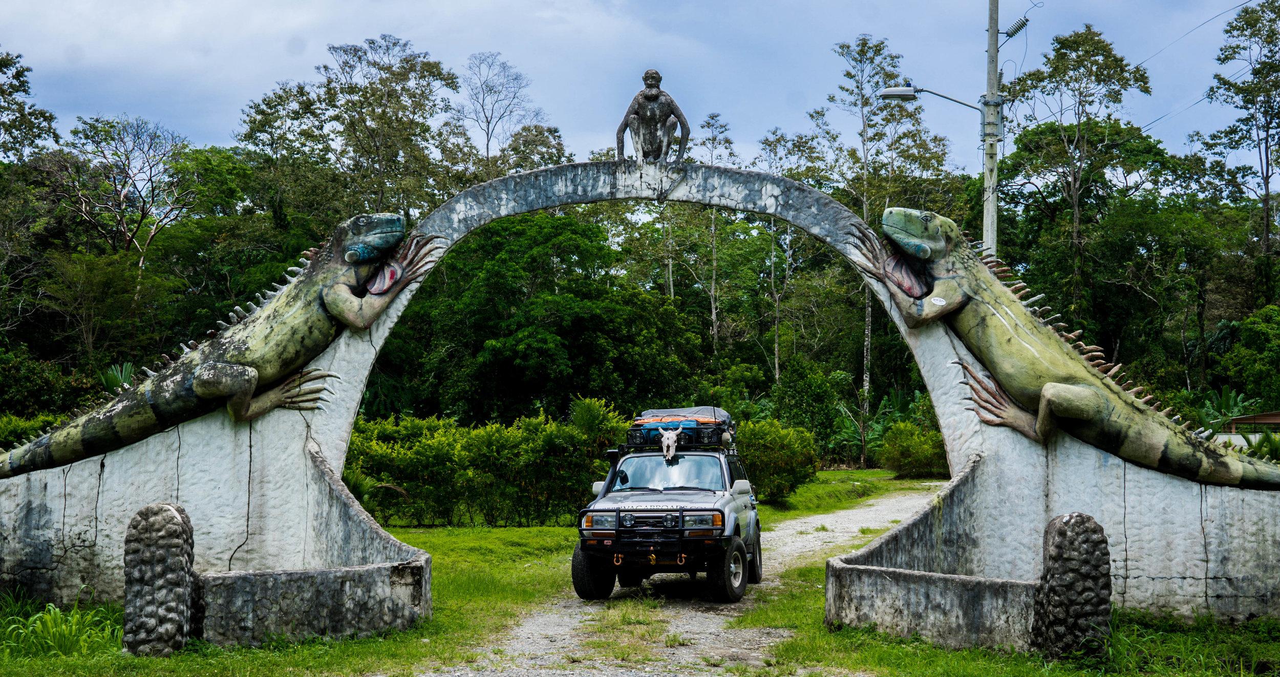 car under iguanas.jpg