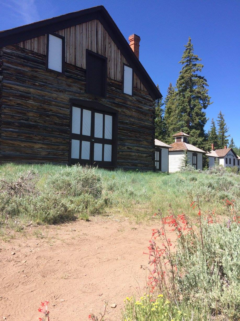 Wildflowers, cabins and granaries
