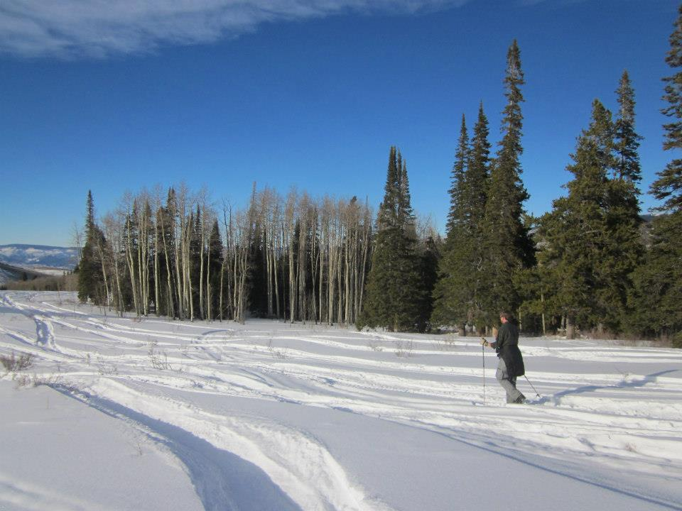 A leisurely ski around the cabin