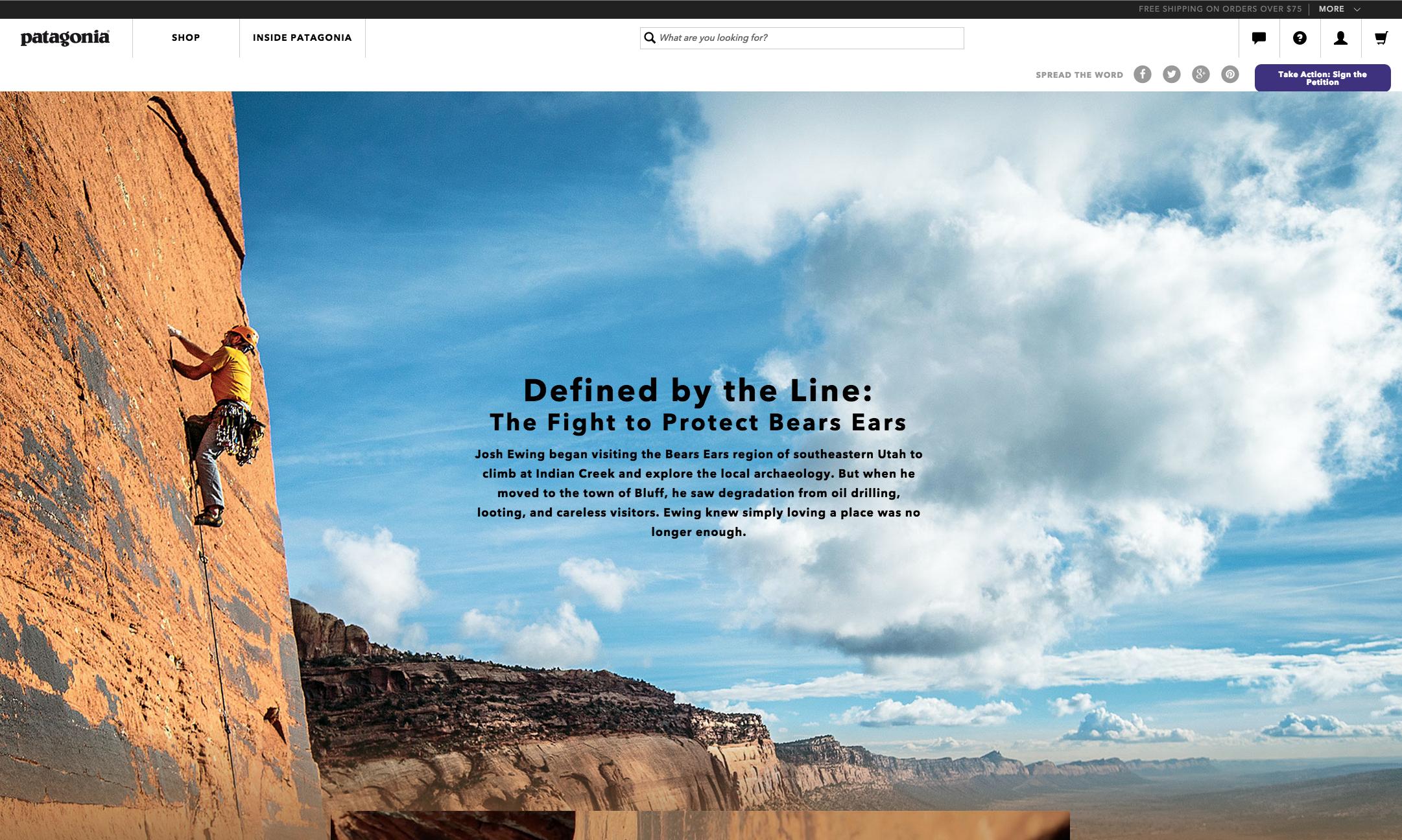 Patagonia Microsite Landing Page