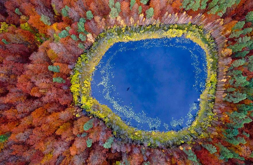 autumn-photography-2-4__880.jpg