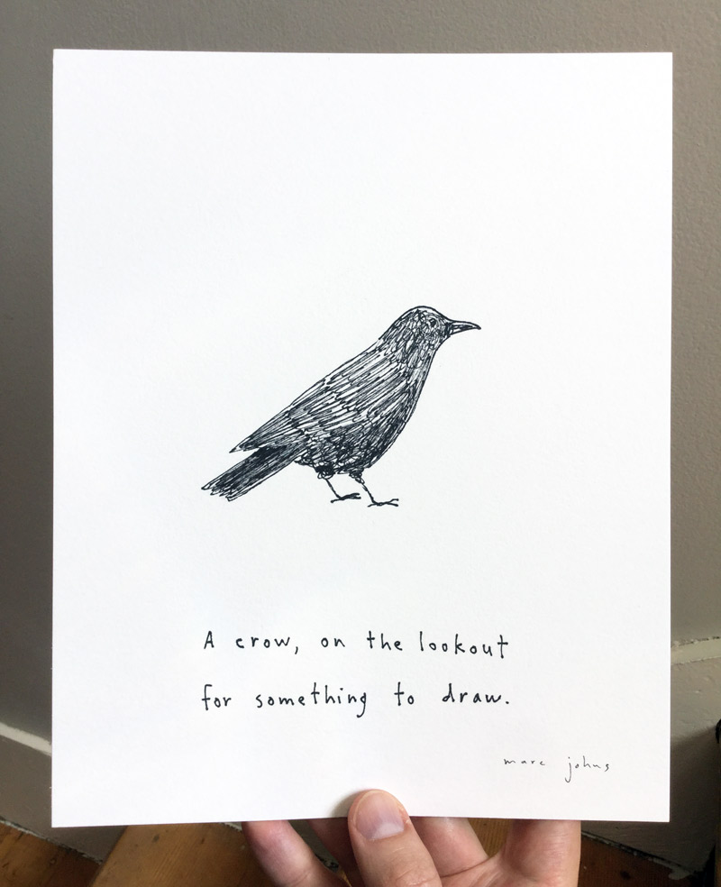 crow-something-to-draw-photo-800.jpg