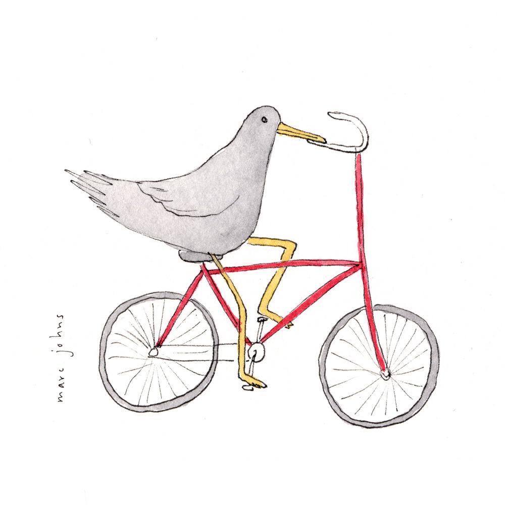 bird-on-bicycle-sq.jpg