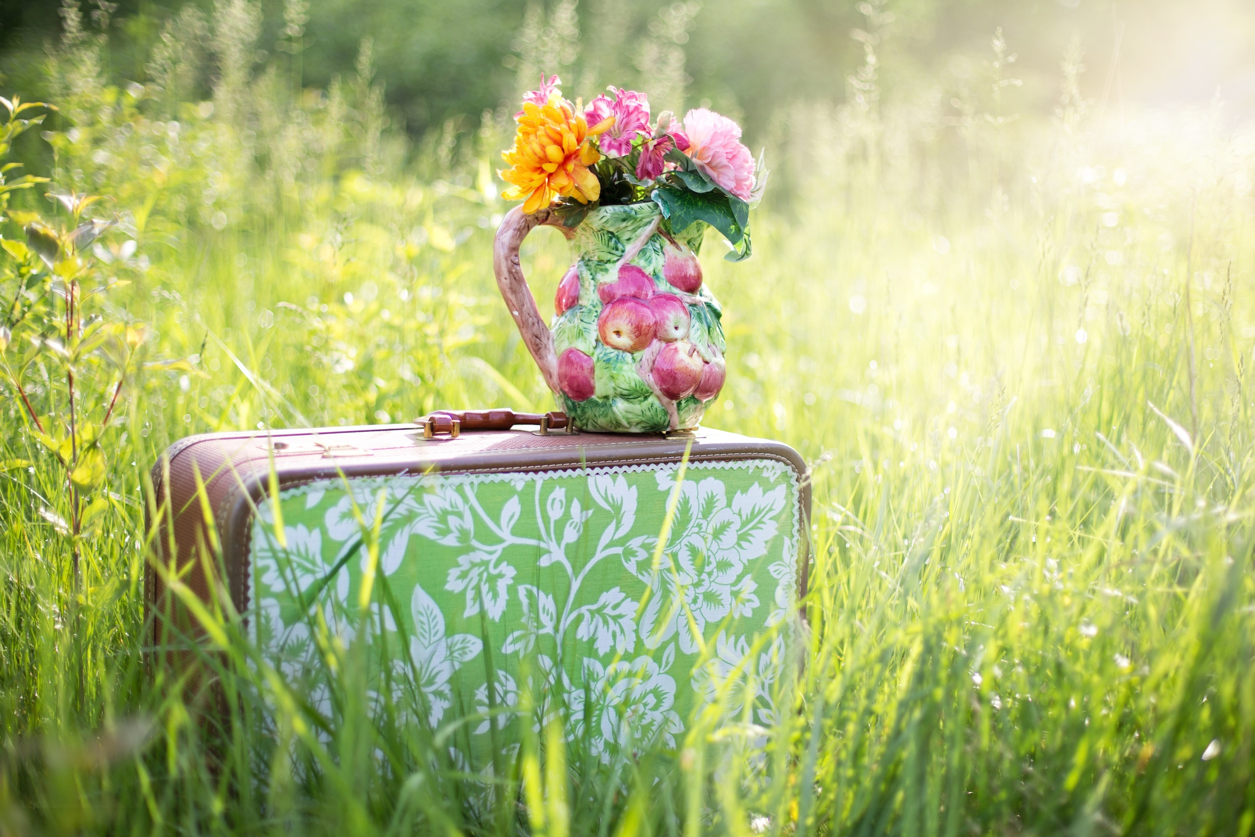 suitcase in a field of grass with a jug of flowers on top