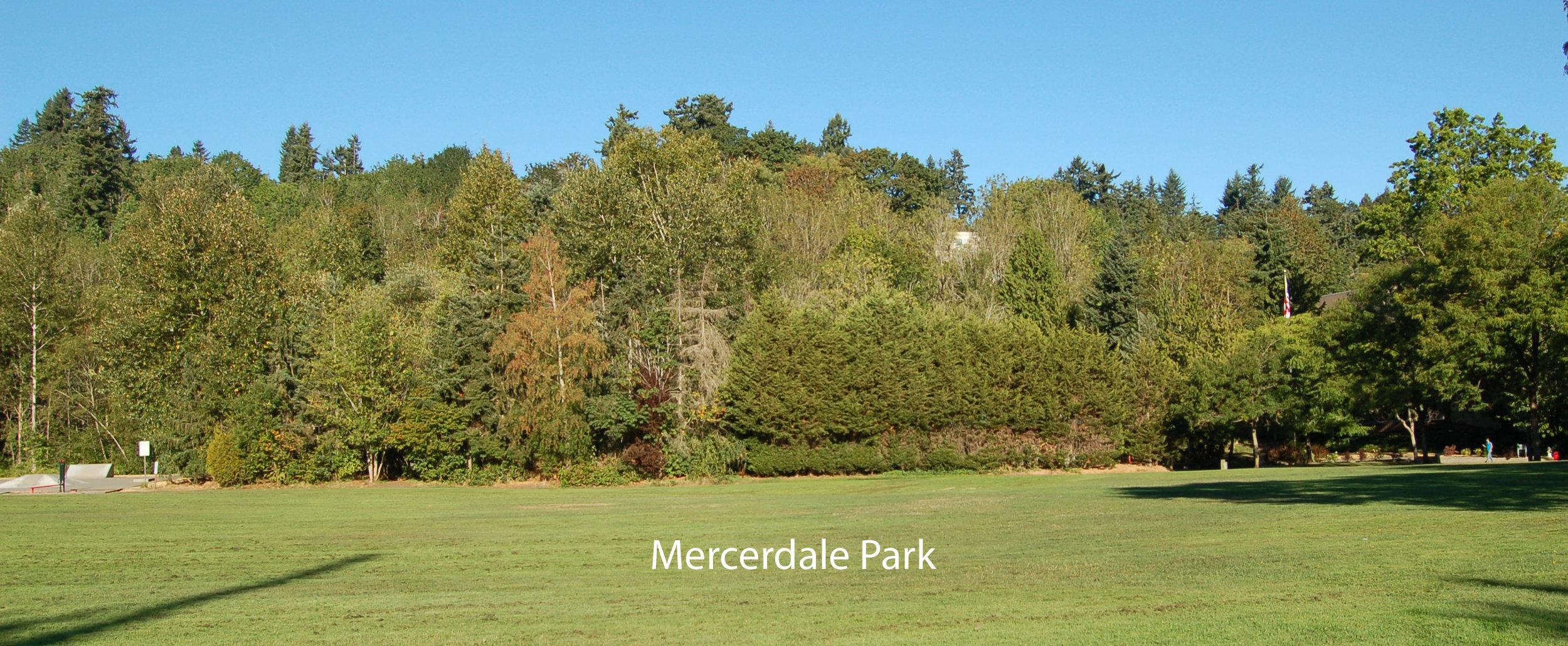 MICA_in_Mercerdale before with Name.jpg
