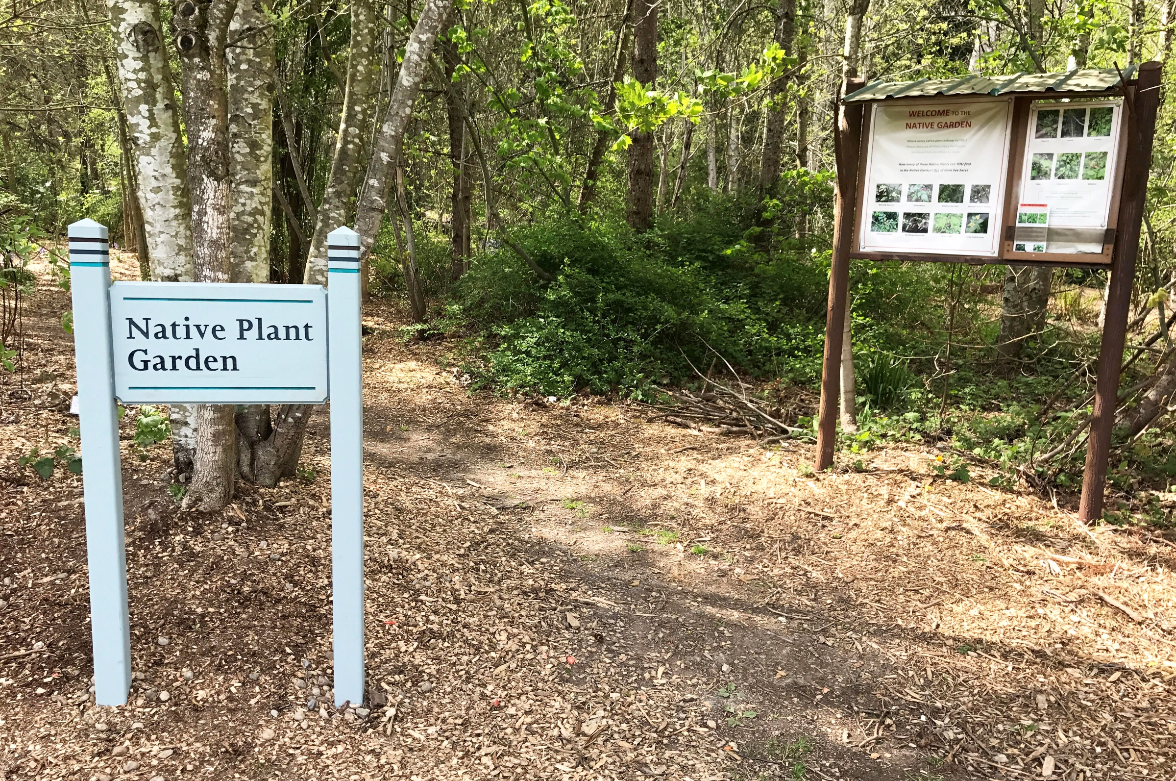Native Plant Garden sign 4-27-18