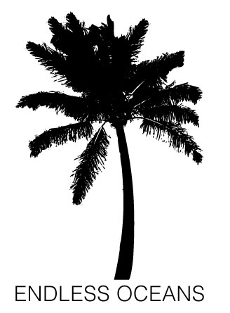 PalmTree_for-web.jpg