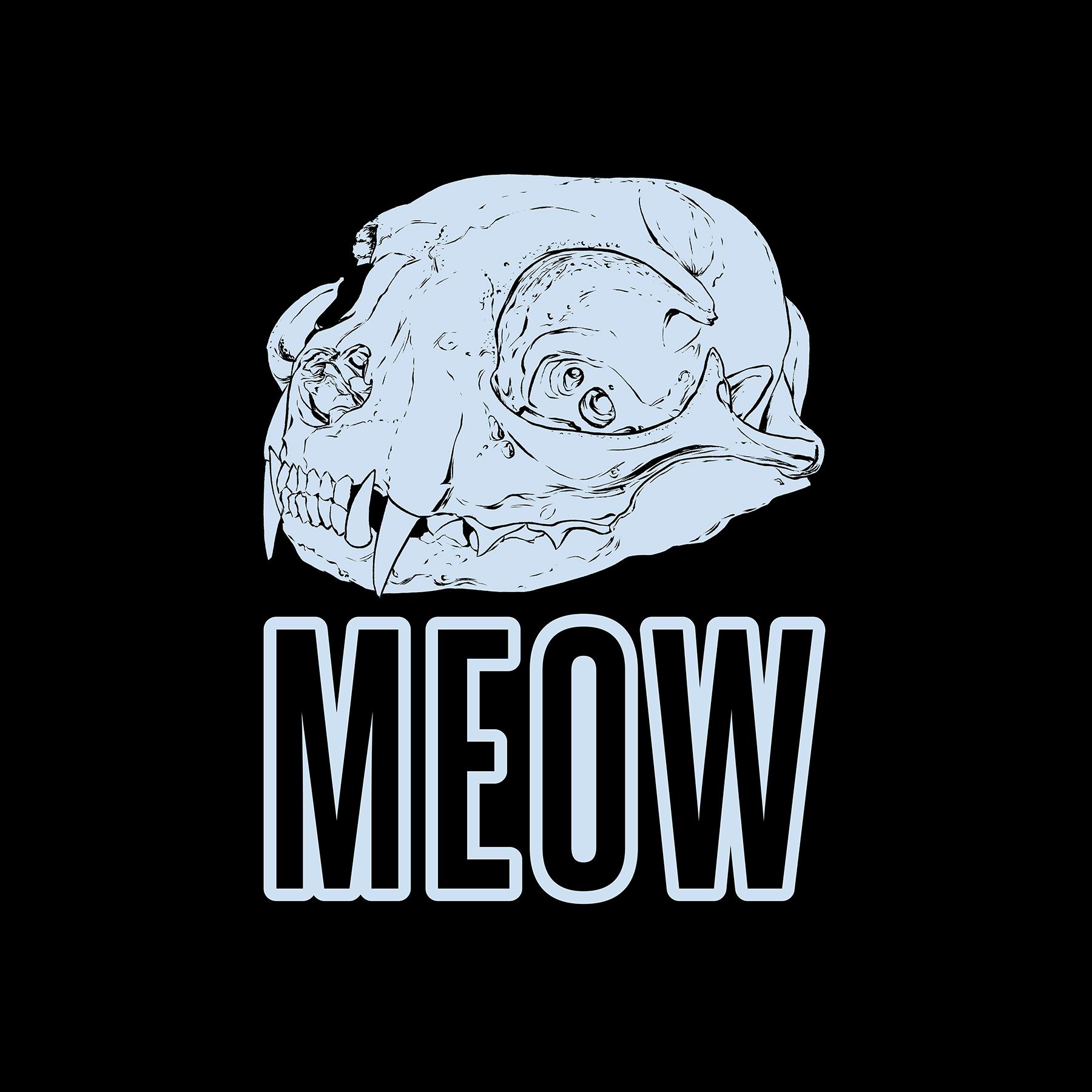 MeowTbasic.jpg