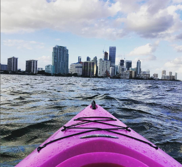 Photo credit: @artstract Come paddle with us on a Blue Discovery Tour! discoveryourblue@gmail.com