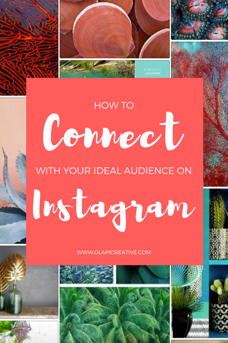 olapi-creative-connect-with-your-ideal-audience-on-instagram