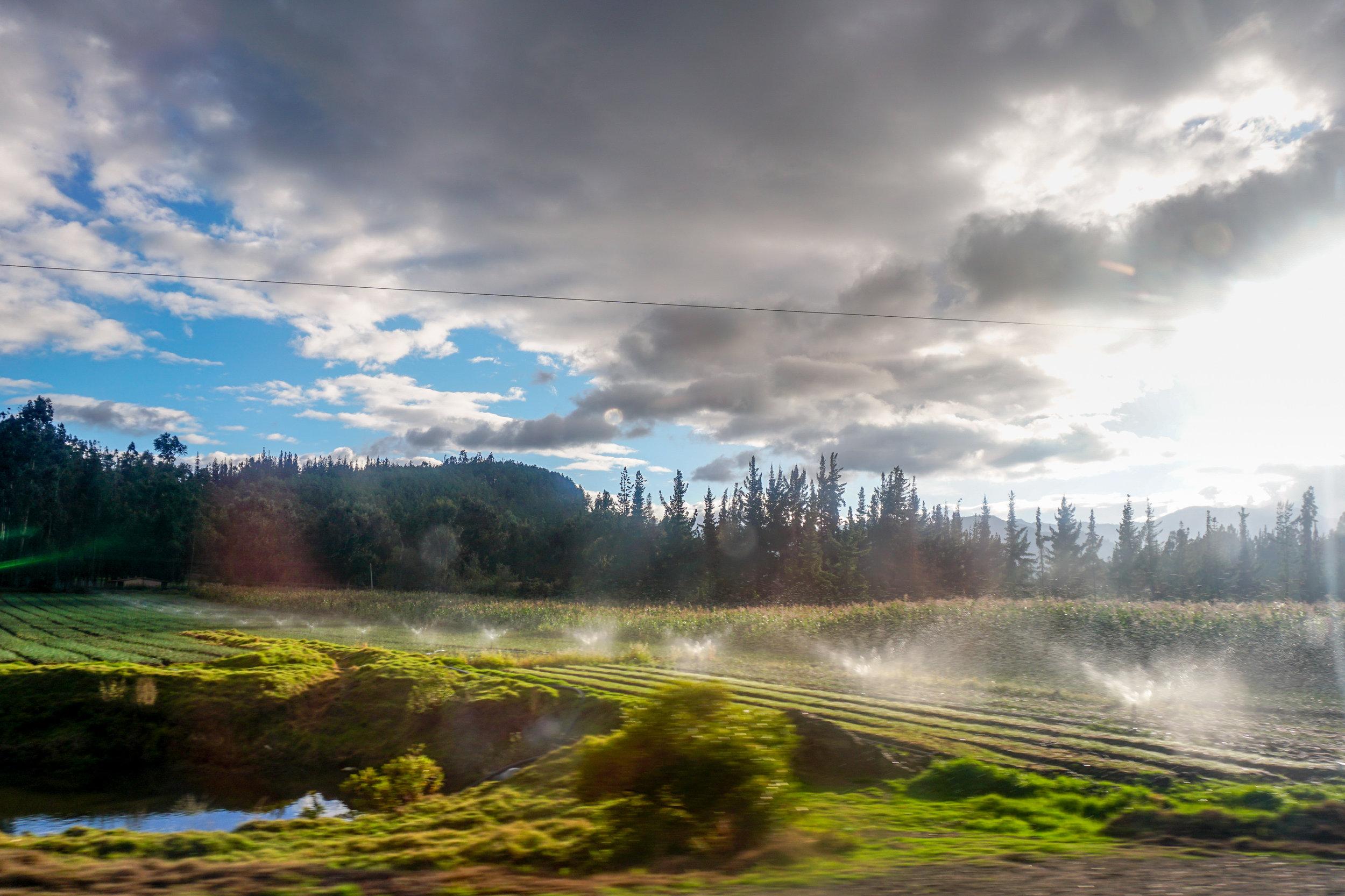 olapi-creative-colombia-farm-scene