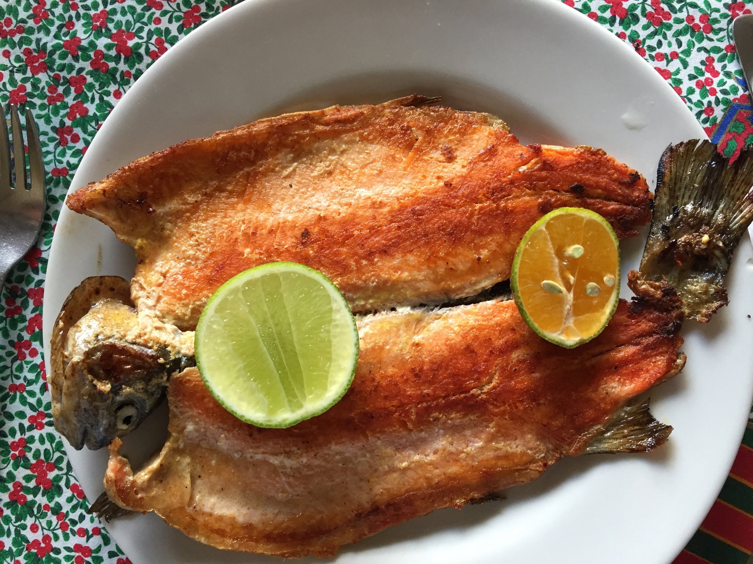 Locally farmed trout with garlic and citrus.