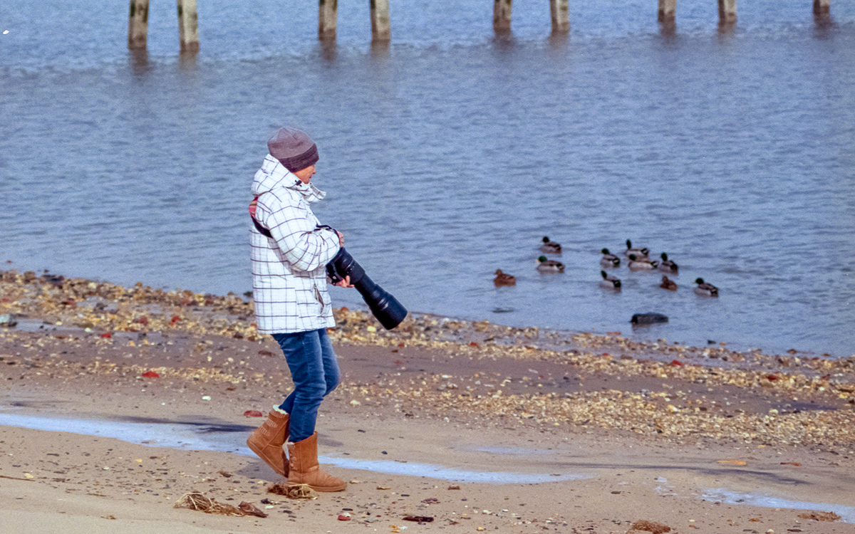 Woodland Beach, Delaware
