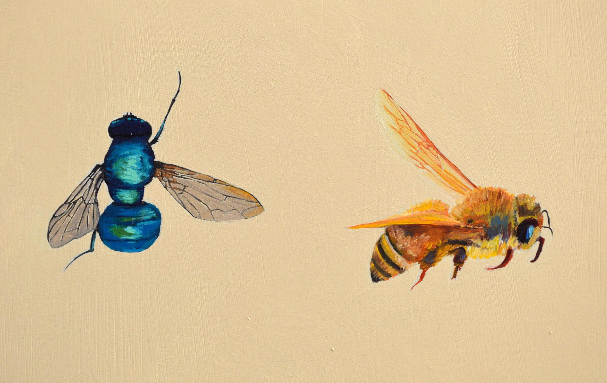flyandbee.jpg