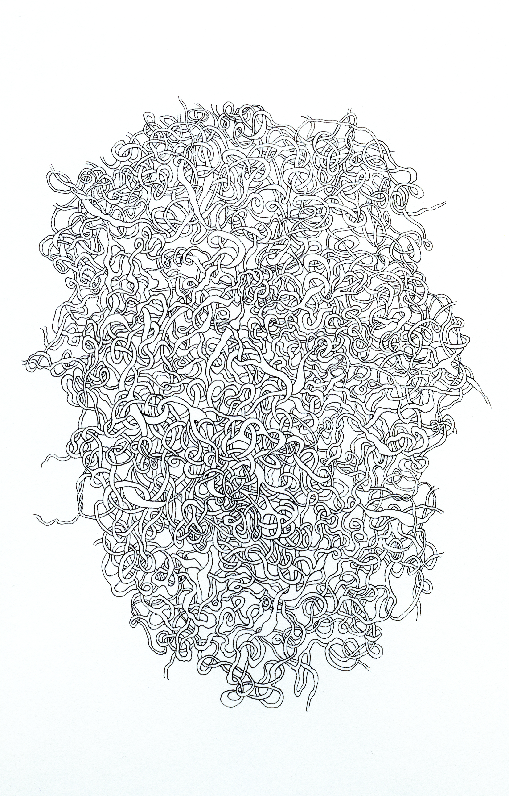 Beehive   pen and ink on paper  14 x 11 in.
