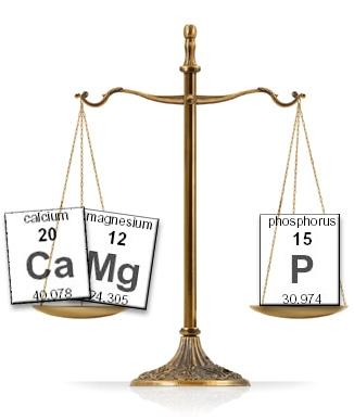 cal-mag-phos-scale.jpg