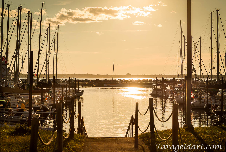 Moncton Family Photographer~ Tara Geldart-3970.jpg