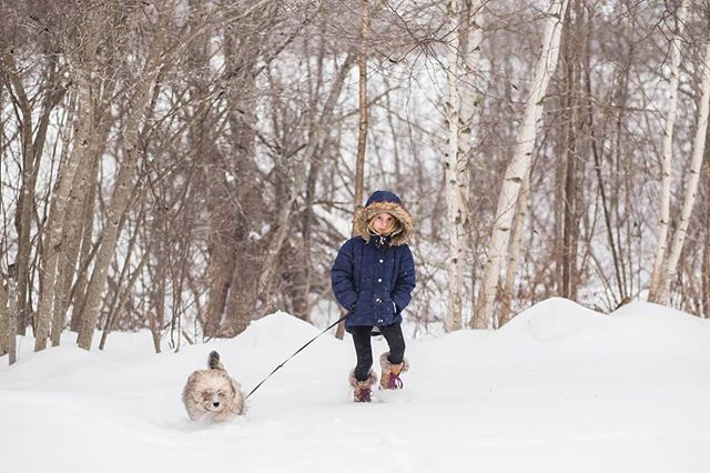Someone still isn't thrilled about taking her puppy out to pee.  I know that's to be expected with an 8 year old but I honestly thought she'd last longer than she did. 😕 #tarageldartphotography #monctonphotographer