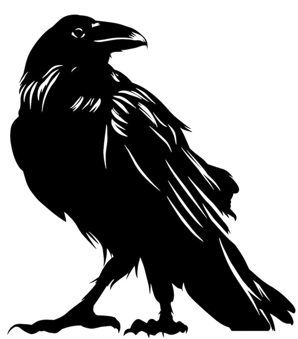 Alejandro Fernandez-crows_1.jpg